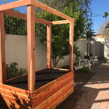 A single 2-foot tall raised bed with 4x4 posts and frame