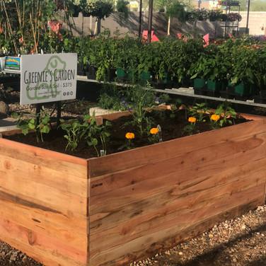 Check out our demo garden box at the Queen Creek A&P Nursery!