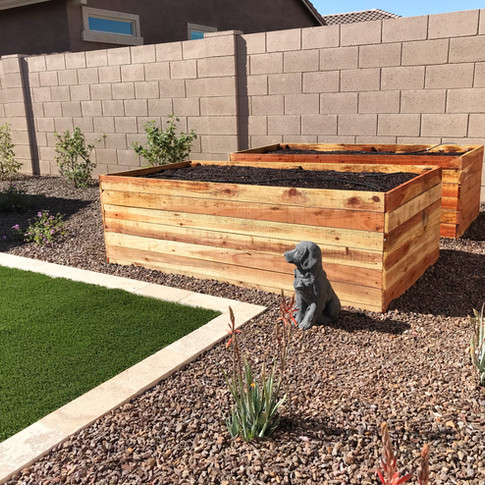 (2) Raised beds at 24 inches tall
