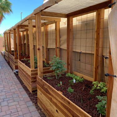 (4) 2-Foot Tall Garden Beds with 4x4 Posts and Trellis