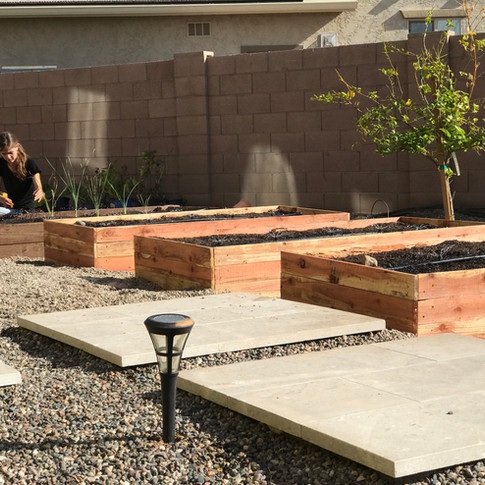 (3) Standard sized raised beds