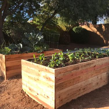 (2) 2-Foot Garden Boxes