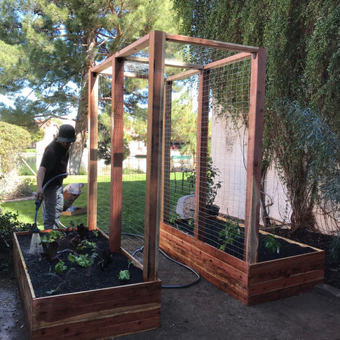 (2) standard raised beds with arbor