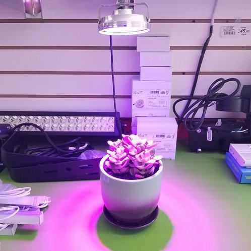 LED Grow Light 12V 10W