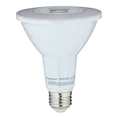 LED Bulb - PAR30 - Day Light