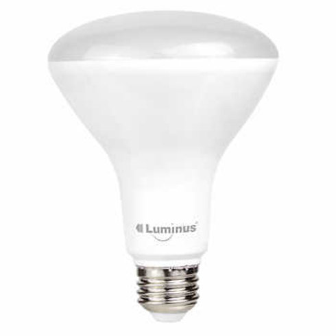 Luminus LED 11W=65W BR30 Bulb 5000K Dimmable