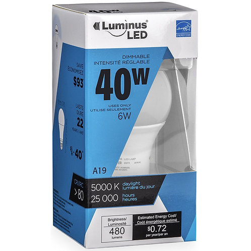 Luminus LED Lightbulb, A19, 6W, Dimmable, Daylight