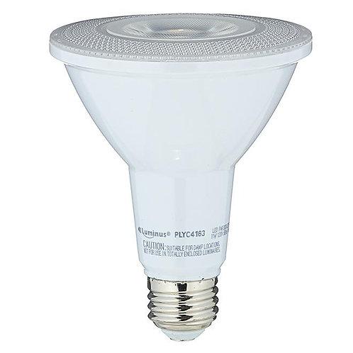 LED Bulb - PAR30 - 11 W - Bright White