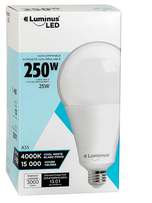 A35 25W E26 LED Light Bulb - Non Dimmable - PLYC1484