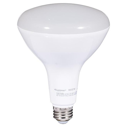 Luminus LED Bulb - Dimmable - Day Light - 17 W