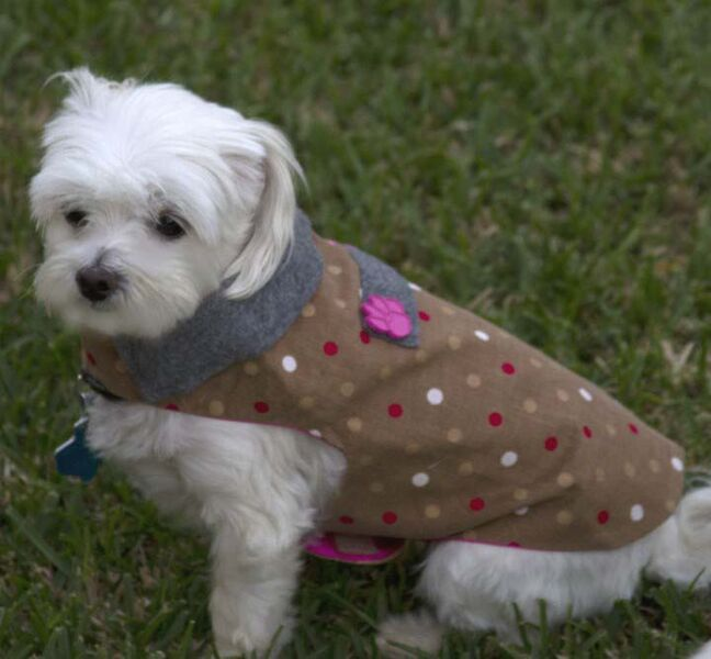 brown polka dot coat_preview