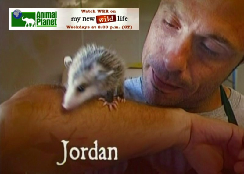 "Animal Planet's, ""My New Wild Life"""