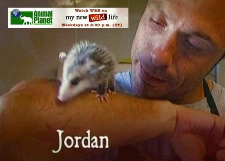 """Animal Planet's, """"My New Wild Life"""""""