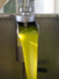 ギリシャ産 オリーブオイル カラマタ