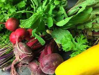 鎌倉野菜のグリーンサラダ;不定期で鎌倉の市場に野菜を買い付けに行っています♪美味しい野菜を美味しいギリシャ産のオリーブオイルで是非どうぞ!!