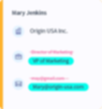 CRM-Tabs2.png