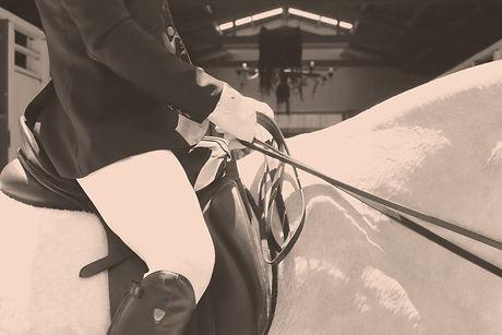 Horseback%20Riding_edited.jpg
