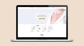 Website Design & Development - Professional