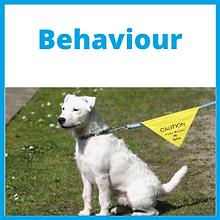 Behaviour_Front.png