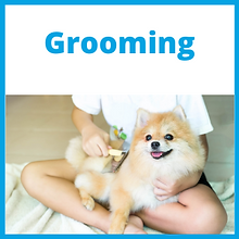 Grooming_Front.png