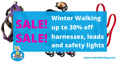 SALE!!! up to 30% off.png