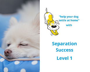 Online Course Separation Success in Dogs Level 1