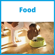 Food_Front (2).png
