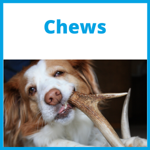 ChewsFront.png