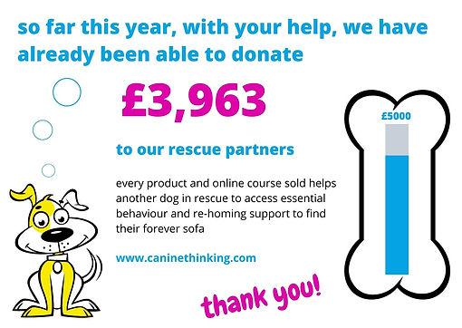 RescueFundraising_2020-06-30.jpg