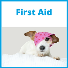 FirstAid_Front.png