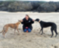 Dog training on the beach