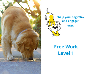 Online Course ACE Free Work Level 1