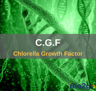 C.G.F Chlorella Growth Factor- Bio2go Health