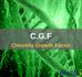 Chlorella Growth Factor (CGF)