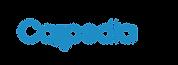 Logos marcas CAII 2-12.png