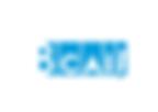 Logos marcas CAII-23.png