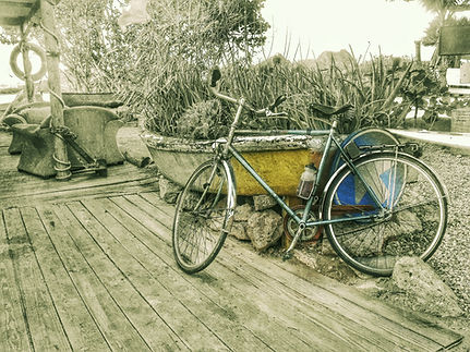 bike vocal b&w-01.jpeg