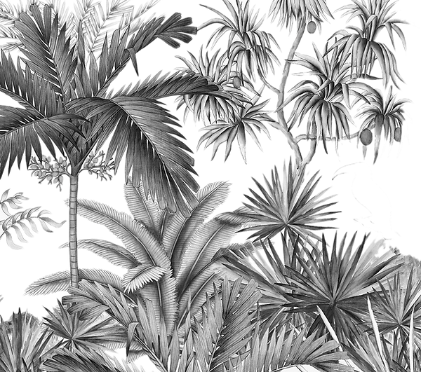arbre jungle detoure.png