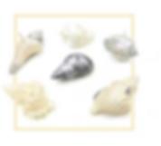 En général, la perle de nacre est douce et apaisante. Sur le plan physique, elle rééquilibre les carences en calcium, compense la décalcification osseuse. C'est selon la couleur de la nacre que l'on choisira son application.