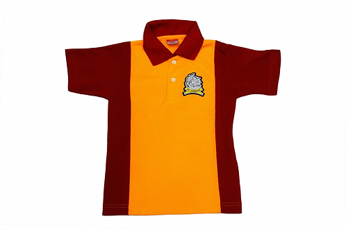 ID: ST2039 (Sports Collar Tshirt)