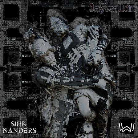 Sick Nanders - Jaywalkin'.jpg