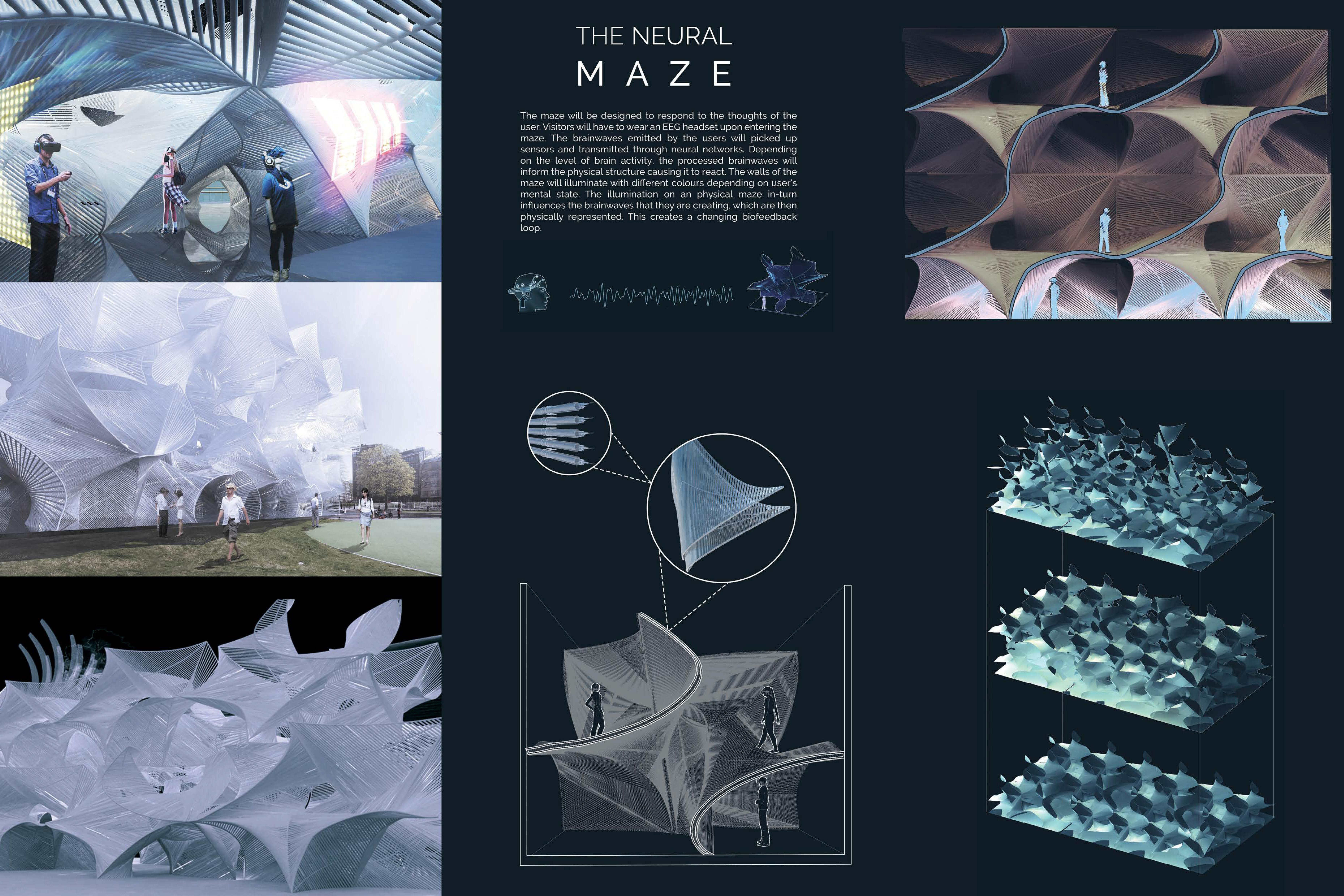 Neural Maze