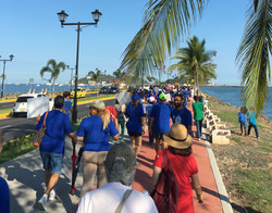 Walking for Science Down the Causeway