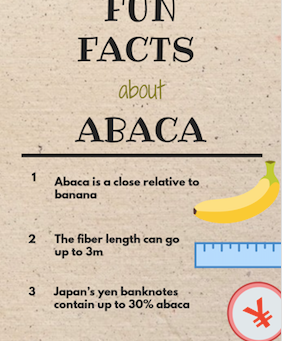 7 Fun Facts about Abaca