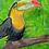 Thumbnail: Toucan do anything! - Kids Hoodie