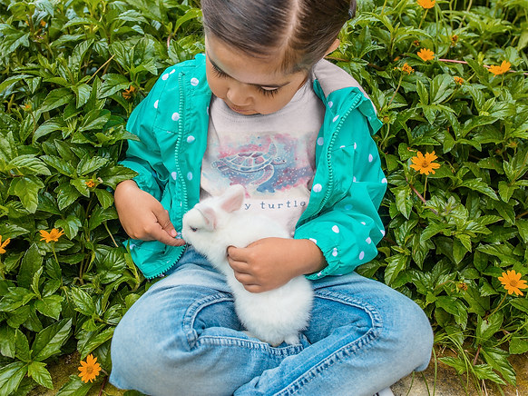 children-s-t-shirt-mockup-of-a-little-girl-and-a-bunny-a12106.png