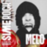 sr20_IG_melo.jpg