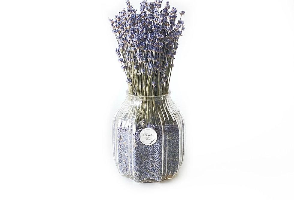 Dried Lavender II