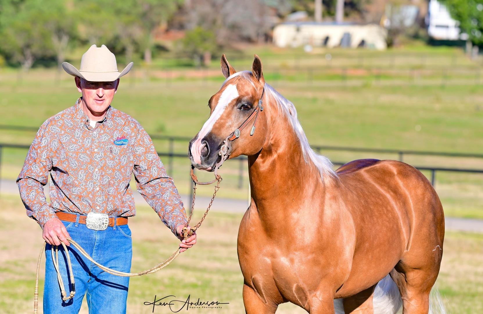 rob lawson pally stallion 179.jpg