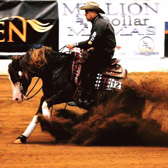 inferno-sixty-six-breeding-stallion-rein